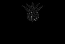 лого Трын трава